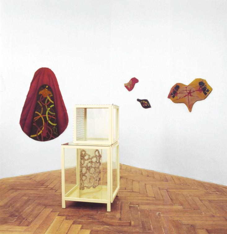 Galerie Martin Janda · Christine & Irene Hohenbüchler